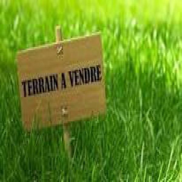 Offres de vente Terrain Bossieu 38260